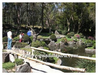 Guadalajara attractions- Parque Colomos- Japanese Garden